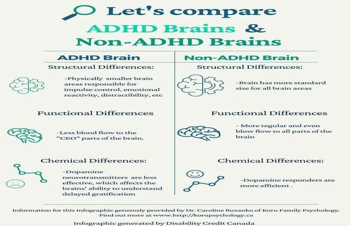 ADHD brain comparison